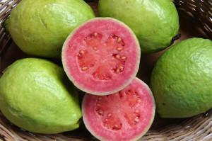 Тропическият плод гуава съдържа прекрасни хранителни качества и полезни за здравето вещества