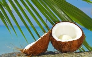 Кокосовият орех е способен да пази здравето на нашите зъби