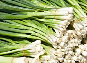 Зеленият лук и ползите за здравето от него