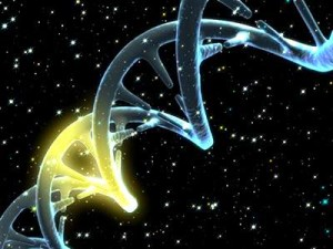 Откриха ген, който е вероятен причинител на вид папиларен рак
