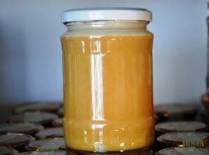 мед от магарешки бодил