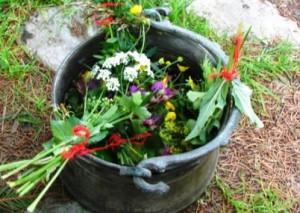 билки за отводняване