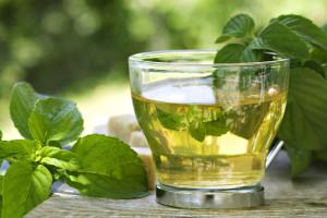 Помогнете си с билкови отвари при пиелонефрит