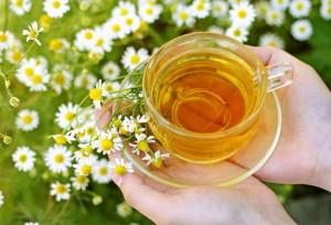 Лечение на ишиас с природни средства – чай от лайка