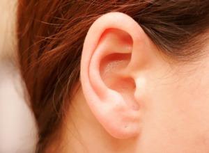 гъбички в ушите
