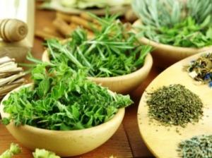 билки за щитовидна жлеза