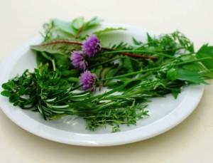 билки за бъбреци
