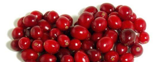 Червената боровинка е супер за болки в бъбреците