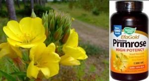 Помогнете си с масло от вечерна иглика – кралският лек срещу много болести