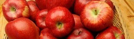 Ябълков оцет, лечение, рецепти