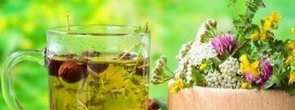 Чаят от бял равнец е полезен при бяло течение