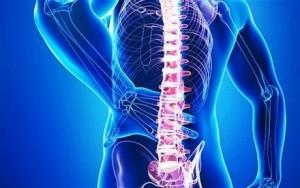 Болки в гърба? Тези три упражнения вършат чудеса!