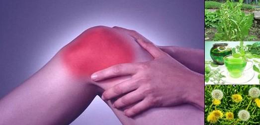 Болки в коляното – топ рецепти от народната медицина, лечение и лекарства