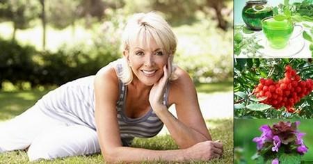 Народни средства могат да ви помогнат за преодоляване на симптомите на менопауза