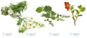 Смесете равни части от билките: бял равнец, лайка, листа от мента и листа от червена боровинка за ревматоиден артрит.