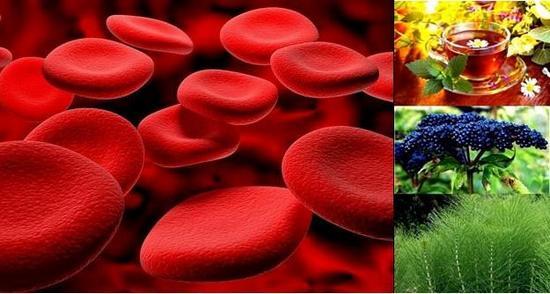 Секретирането на кръв в урината е ясен симптом на много заболявания.