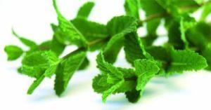 Когато имате сърцебиене, можете да вдишвате аромата на стрити пресни листа от маточина или мента. Тези билки са полезни за сърцето и успокояване на нервите.