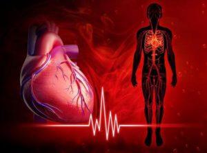 Илюстрация на диаграма на сърдечната честота.