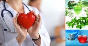 Сърцебиене – лечение, билки и причини.