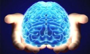 Морфологичната основа на деменцията се явява тежко органично увреждане на централната нервна система.