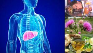 Цироза – симптоми, видове, лечение и диета
