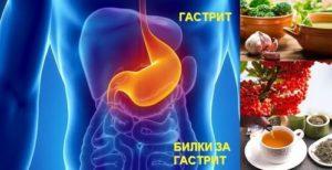 Народни рецепти и билки при гастрит с ефикасно действие.
