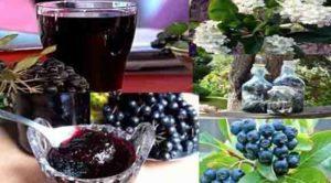 Помогнете си с рецепти от арония за много болести.
