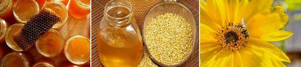 Пчелни продукти при симптоми на разширени вени