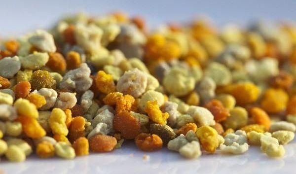 Народната медицина препоръчва уникалния пчелен прашец за различни болести