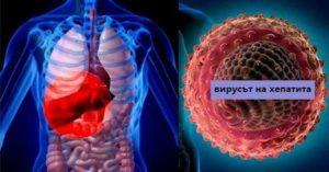 За разлика от другите видове хепатити, заболяването хепатит А е най-леко и повечето болните оздравяват без последици в 90% от случаите, но са възможни усложнения и смъртни случаи