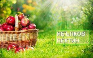 Приложение на природния ябълков пектин за отслабване и за болести като атеросклероза, сърдечно-съдови, храносмилателни, превенция на рака и други