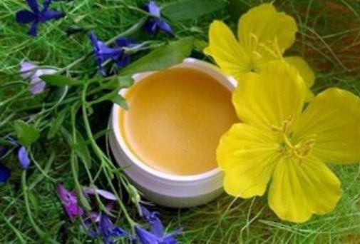 От цветовете и листата на здравеца се прави мехлем за контактен дерматит