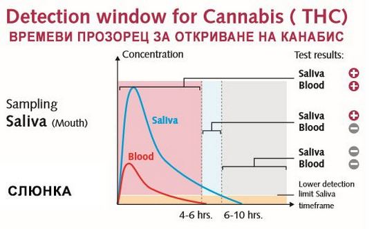 От графиката може да се придобие визуална представа за концентрацията на наркотика (в случая канабис) според времето на престой в слюнка, пот и урина сравнено с кръв (червената крива, blood).
