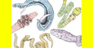Клизми против глисти и др. паразити. Народни рецепти